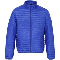 Kleidung Herren Daunenjacken 2786 TS018 Königsblau