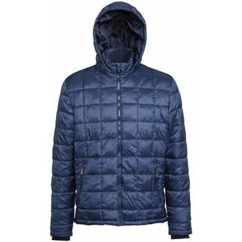 Kleidung Herren Daunenjacken 2786 TS025 Marineblau