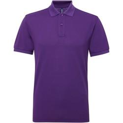 Kleidung Herren Polohemden Asquith & Fox AQ015 Violett