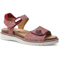 Schuhe Damen Sandalen / Sandaletten Calzamedi SANDALEN  EURIA ROT