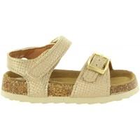 Schuhe Mädchen Sandalen / Sandaletten Destroy K115711 Gold