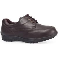 Schuhe Derby-Schuhe Calzamedi beiläufig bequem Schnüre MARRON