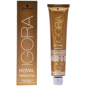 Beauty Damen Haarfärbung Schwarzkopf Igora Royal Absolutes 6-70  60 ml