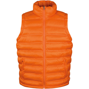 Kleidung Herren Daunenjacken Result R193M Orange