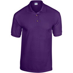 Kleidung Herren Polohemden Gildan 8800 Lila