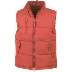 Kleidung Herren Daunenjacken Result R88X Rot