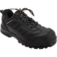 Schuhe Herren Sicherheitsschuh Grafters  Schwarz