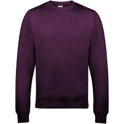 Kleidung Herren Sweatshirts Awdis JH030 Pflaume