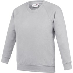 Kleidung Kinder Sweatshirts Awdis AC01J Grau